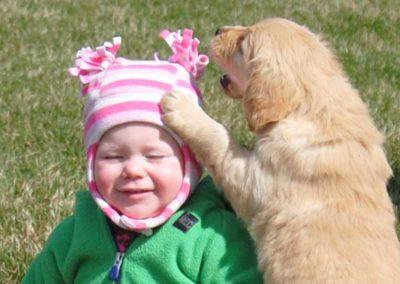 Puppy eat hat April 2015